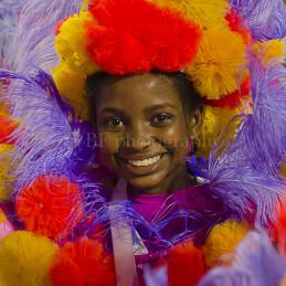 The sense of Carnaval, Rio de Janeiro, 2013